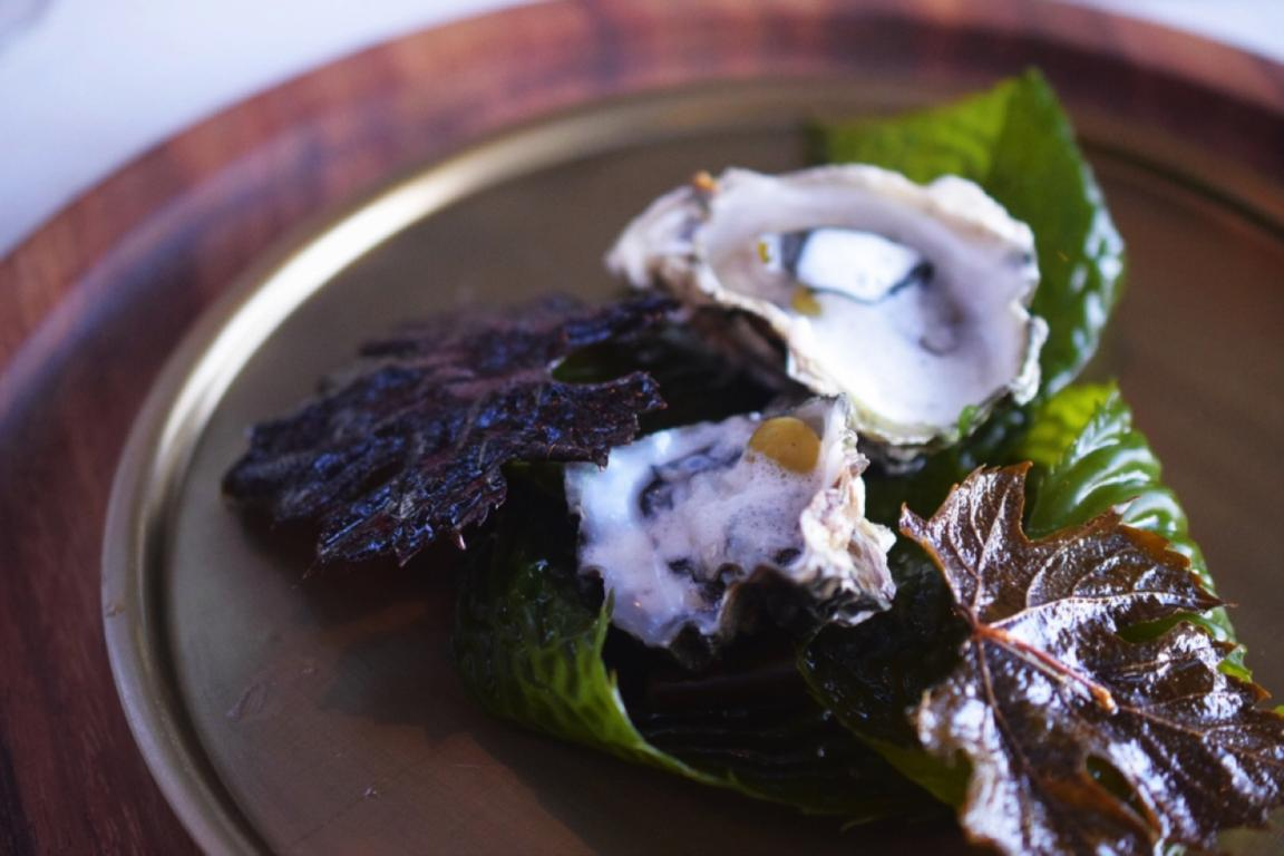 Kumamoto oysters with toasted grape leaves. Photo AGringoInMexico.com