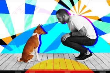 Hablarle a tu perro como bebé mejora su vida