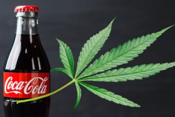 Coca-Cola analiza entrar al negocio de bebidas con infusión de...