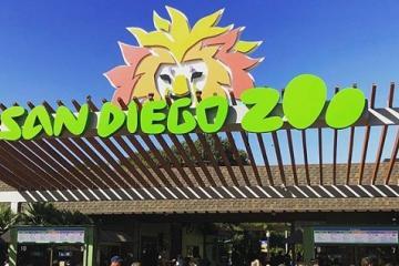 Niños entran gratis a Zoológico de San Diego