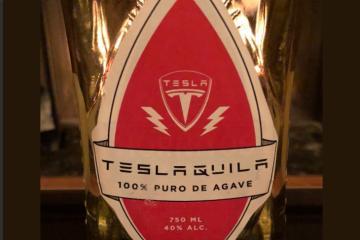 Tequila, ¿el nuevo amor de Elon Musk?