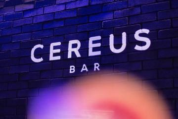Cereus Bar, the place that will combine the best of Tijuana and San...