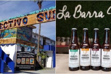 Asiste al primer festival de Kombucha en la Baja