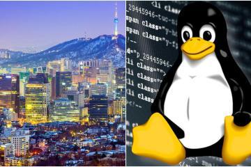 Adiós, Windows. Corea del sur cambia a Linux