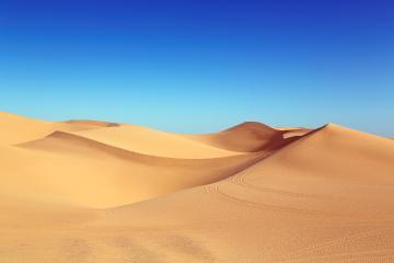 México tendrá tierra del Sahara