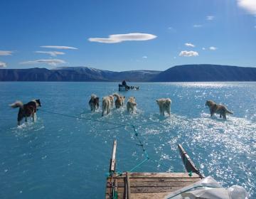 FOTO: El cambio climático está derritiendo a Groenlandia