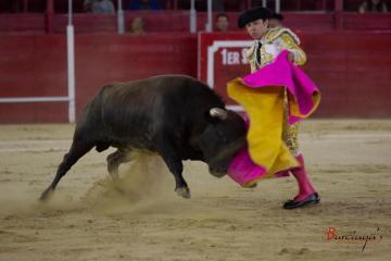 Así puedes ir a una corrida de toros este viernes en Tijuana