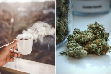 Aprueban la primera cafetería de marihuana de EEUU en California