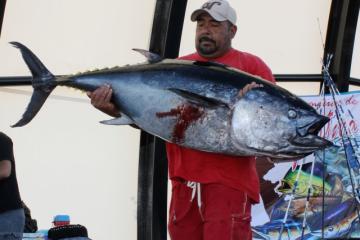 Puedes ganar hasta 100 mil en torneo de pesca en Ensenada