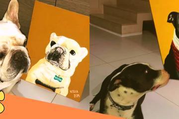 Tijuanenses podrán pintar cuadro con retrato de su mascota