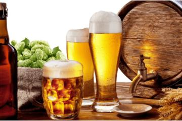 Lose up to 5 kilos in a month, on a beer-based diet?
