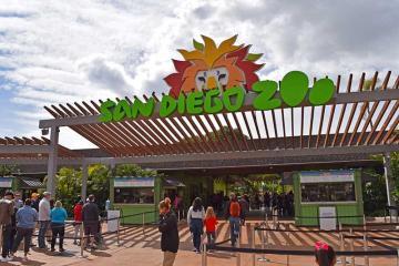Zoológico de San Diego consiente a niños con entrada gratis en...