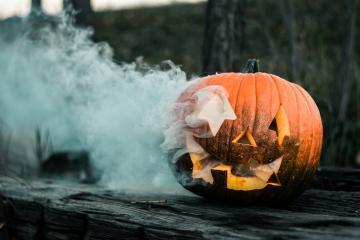 Encuentra la calabaza perfecta para Halloween en este lugar de San...