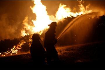 Los incendios de Baja California han cobrado al menos 11 mil víctimas