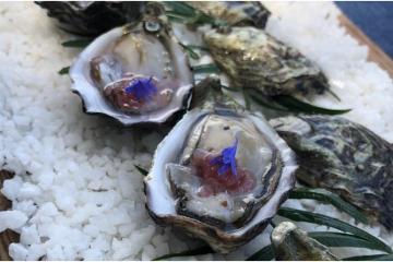 Sal de San Felipe es finura marina pura en la canasta de los...