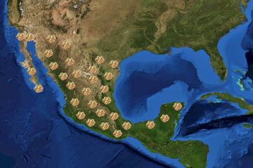Mapa muestra que México es el universo del taco
