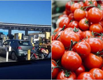 You cannot cross tomato and peppers at San Ysidro customs