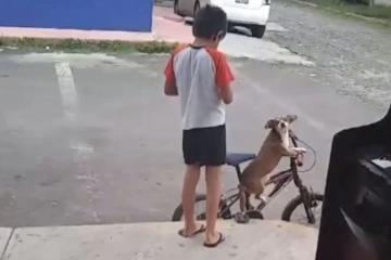 Internet enloquece con niño que pasea en bicicleta con su perro