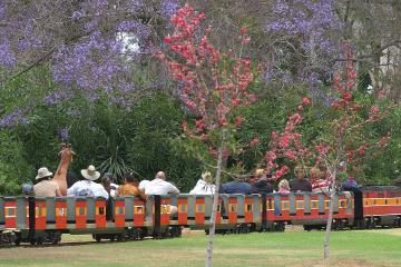 Balboa Park realiza paseos en tren miniatura los fines de semana