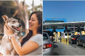 What do you need to cross with your pet from Tijuana to San Diego?