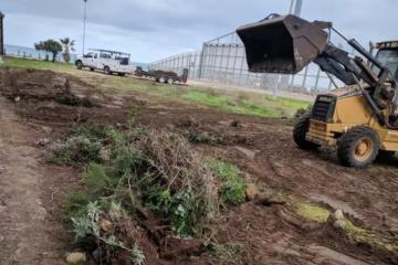 Destruyen jardín binacional entre Tijuana y San Diego