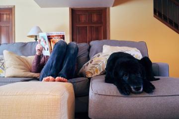 Mascotas también se pueden estresar en la cuarentena