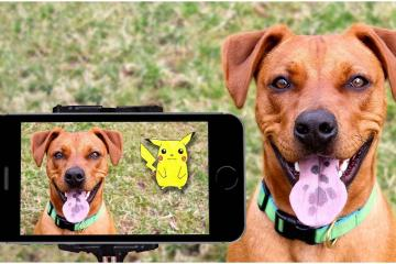 Ya podrás jugar Pokémon GO desde casa