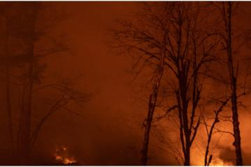 Baja California tendrá clima propicio para incendios