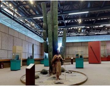 Cecut tiene nuevo recorrido virtual por el Museo de las Californias