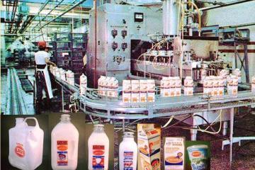 La leche que todo tijuanense recuerda este Día Mundial de la Leche
