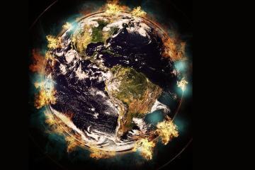 Estudio: La sexta extinción masiva ya está ocurriendo
