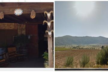 Sancionados negocios en Valle de Guadalupe por Gobierno Municipal