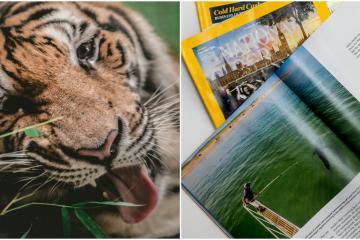 ¿Te gusta la fotografía? National Geographic dará clase virtual...