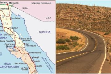 Learn about the history of the iconic road that crosses the Baja...