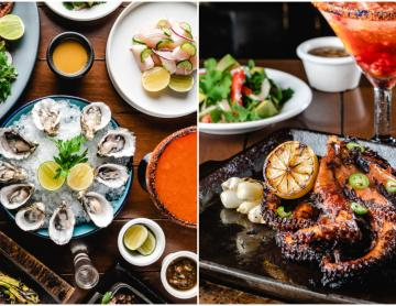 Are you a seafood lover? Tijuana indulges you with the new...