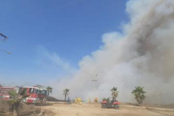 Bomberos en Rosarito realizan operativo por incendio forestal
