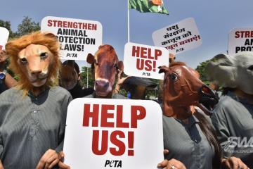 PETA se lanza contra zoológicos y otras empresas