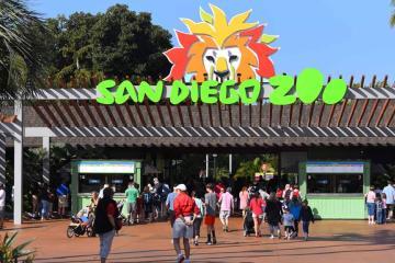 Biólogo estafa al San Diego Zoo con más de un cuarto de millón...