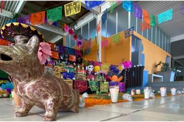 Colegio en la Colonia Libertad dedica Altar de Muertos a fallecidos...