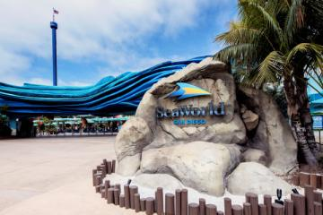 SeaWorld San Diego temporarily closes its doors due to COVID-19