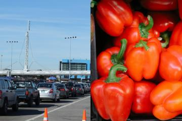 CBP recalls that it is forbidden to cross peppers and tomatoes into...