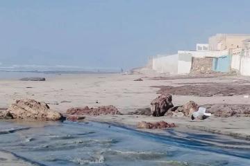 Rosarito beaches closed until further notice