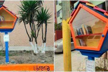 """Casita de colores: La """"librería"""" que busca promover la lectura..."""