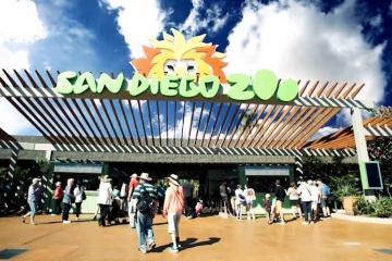 San Diego Zoo and Safari Park begin their reopenings