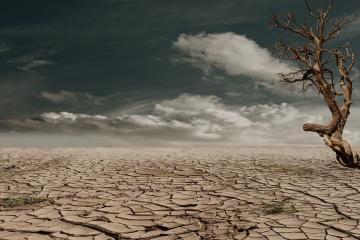México enfrenta grave sequía en 80% de su territorio