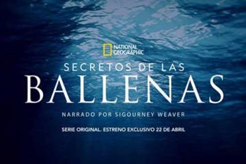 Trailer: Secretos de las Ballenas