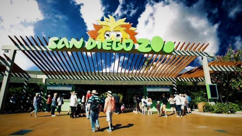 San Diego Zoo Facebook Oficial