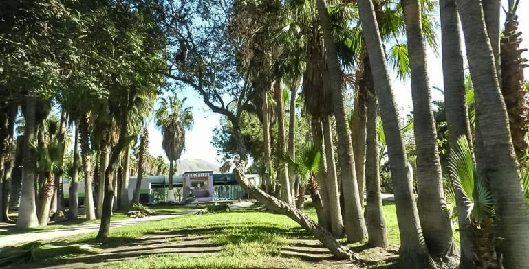 Los 209 parques de Tijuana son atendidos de forma continúa