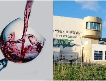 UABC en Ensenada realizará Concurso Internacional de Vino en junio