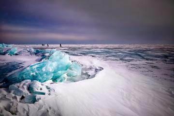Encuentran extraño animal que sobrevivió 24 mil años congelado...